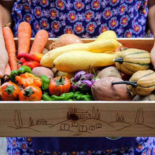 Bainbridge Island Organic Farm Businesses