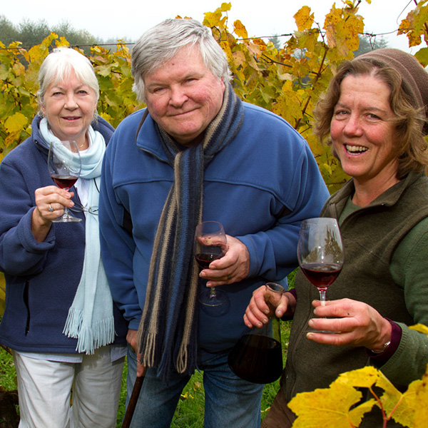 Bainbridge Island Vineyards Businesses