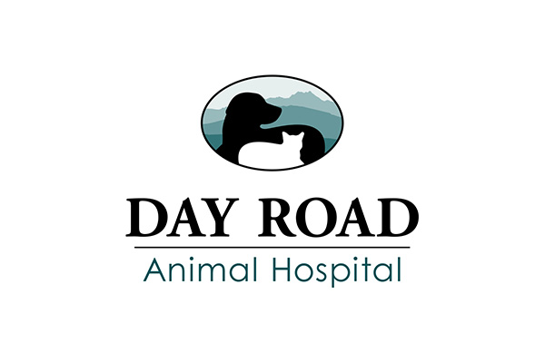 Day Road Animal Hospital Bainbridge Island Get Help Emergency
